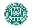 Viborg F.F. Prof. Fodbold
